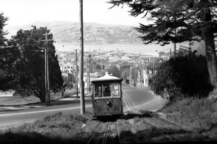 Tram running into the Town Belt