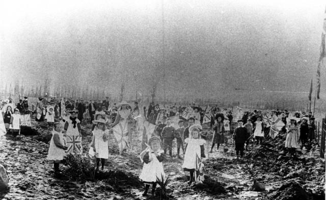 Arbor Day 1900