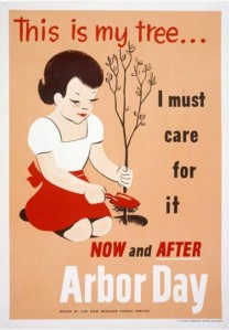 1950's Forest Service Poster