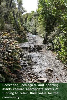 Mt Cargill Walking Track