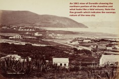 The Northern Shoreline